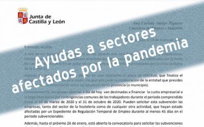Ayudas de la JCyL a sectores afectados por la situación de la pandemia