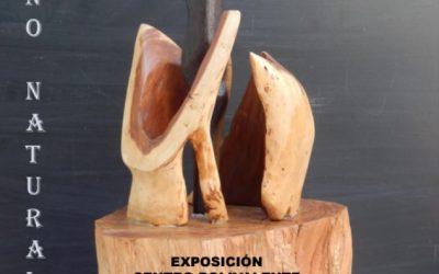 Exposición Esculturas Raúl Apausa Yuste